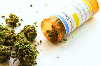 Marihuana als Medizin verharmlost