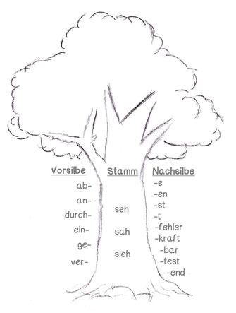 Wortstamm Lernwortschatz üben, Rechtschreibung mit Wortstamm üben, Wortstamm Wortfamilie üben