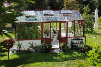 Gewächshaus aus Glas mit Blumen - Garten, Gewächshaus, Hochbeet, Hobbygärtner, Gemüse, Tomaten, Offenbach, Hessen