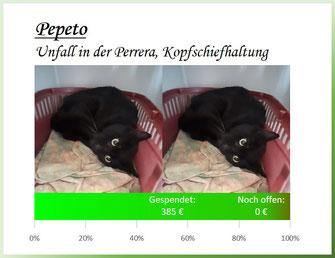 Pepeto - Kopfschiefhaltung nach Unfall