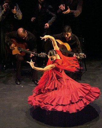 flamenco collège