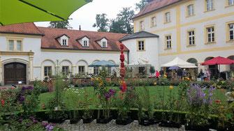 Schloss Köfering, Gartenlust im Schlosshof