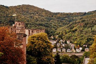 Teil des Schlosses und ein Blick über den Neckar