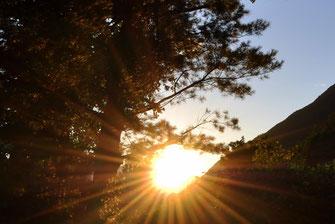 Sonnenuntergang im Garten