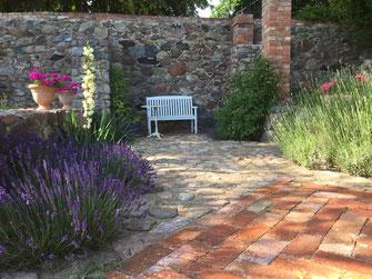 Lavendel im mediterranen Bereich