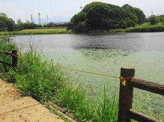 フェンスが崩れロープが張られた現場(8月4日撮影)