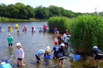 千鳥が池での自然観察会