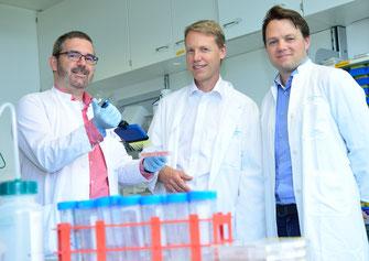 (V.l.) Dr. Jasper van den Boorn, Prof. Dr. med. Gunther Hartmann und Prof. Dr. med. Veit Hornung (Foto: Rolf Müller/Ukom UKB)