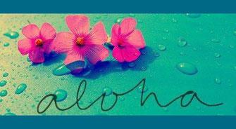 Image of Aloha a guiding principal in Hawaiian wisdom with flowers