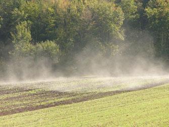 """Nebel steht dampfend, wie """"Hauch"""", wie """"Odem"""", über einem Feld."""