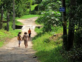 die Wege führten zu den Häusern mitten im Regenwald