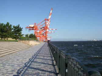 立ち並ぶ青海埠頭のガントリークレーン。向こうの空には、羽田空港へ着陸する飛行機が飛び交う。