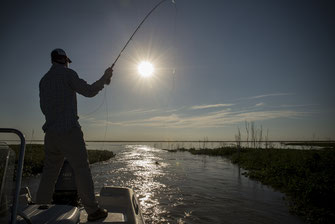 Fly fish North Argentina, FFTC.club destination, Fly fishermen in the afternoon, Parana Gypsi River Cruiser, Golden Dorado Action, Fly fish freshwater destinations.