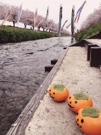 岐阜県の綺麗な川