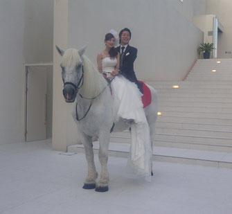 名古屋市の大通りに面した白い建物。道行く人の視線を浴びて2人が白馬に乗ると一体の空気が。