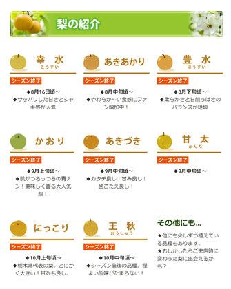 梨の紹介イラストホームページHPサイトデザインナシなし果物果樹園果実園