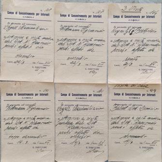 Aluni esempi di cedolini per il permesso