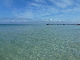 Bild: Anna Marie Island, Florida
