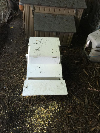 Closed Treadle Feeder with telltale evidence of my hens' curiosity.