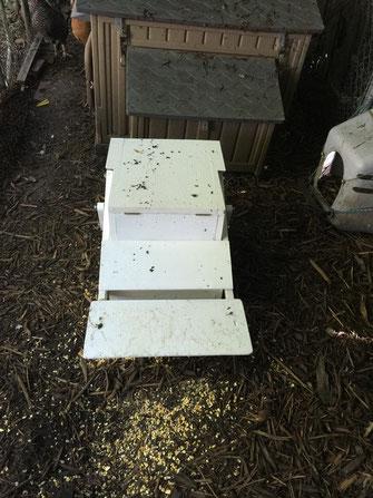 Closed Treadle Feeder with telltale evidence of my hens' curiosity.