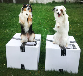 Versandboxen