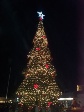 Big kitschy Christmas tree in San Jose del Cabo.