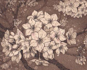 yozakura  腐食銅版画 8x10cm