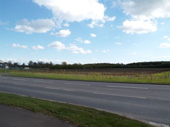 View of the park and ride site from Vendee Drive