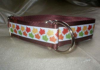 Zugstopp, Halsband, 4 cm, Gurtband schokobraun, Borte mit buntem Laub