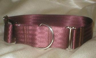 Martingale, Halsband, 4cm, Gurtband schokobraun