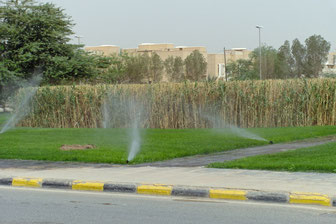 ... water recycling for irrigation of greens.