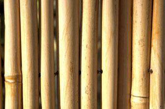 Clôture de bambou fond par Marina Shemesh  http://www.publicdomainpictures.net/view-image.php?image=80243&picture=cloture-de-bambou-fond
