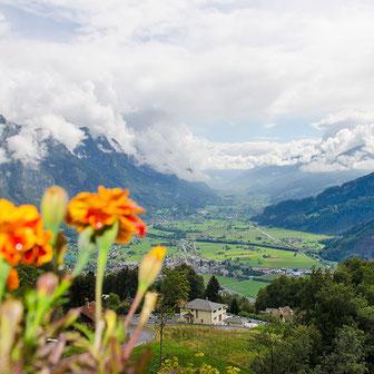 Bild Aussicht Walenstadtberg