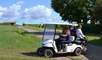 Visite du vignoble Castillon Côtes de Bordeaux en golfette