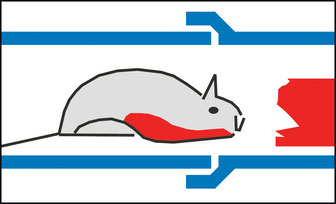 Rattenbekämpfung im Kanal, Mayer GmbH Nußdorf