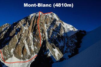 La mythique face Sud du Mont-Blanc (tracé du Pilier du Freney en rouge)