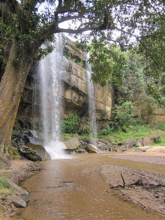 Blieck auf den Wasserfall in den Shimba Hills