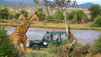 das Samburu Intrepids camp