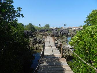 Tagestour nach Wasini Island Kenia