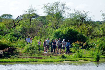 Walking Safari in Kenia