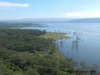Safariangebote für Kenia