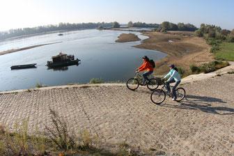 Séjour vélo Douceur Angevine, Domaine de Joreau, Gennes