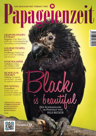 Papageienzeit 31 stellt den Schwarzlori vor, der auf das Cover ziert, so geht es sicher zum Tierarzt, SOS Notfall mit Dr. Britsch, Gemüsekasper wenn Papageien nichts Gesundes wollen, Frisches aus dem garten der Natur