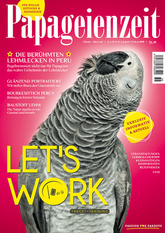 Papageienzeit 36 mit lustigem Graupapagei als Motiv erklärt die Lehmlecken in Peru, stellt den Glanzsittich vor, Leserbericht über eine Vogelrettung in letzter Sekunde, Baustoff Lehm