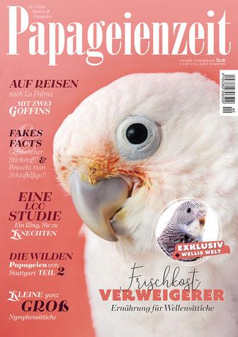 Papageienzeit 40 Cover in Rosa mit Goffinkakadu berichtet über eine Reise mit Goffins, klärt auf über Fakes und Fakts, die wilden Papageien von Stuttgart und über Nymphensittiche