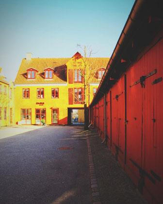 danemark koge ville bois rouge