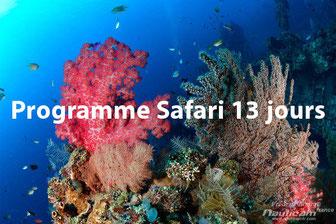 Récif et coraux de Bali, photo à Tulamben, Indonésie.