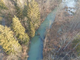 Schadensbild: Versperrung des Wasserflusses durch Bäume und Unrat