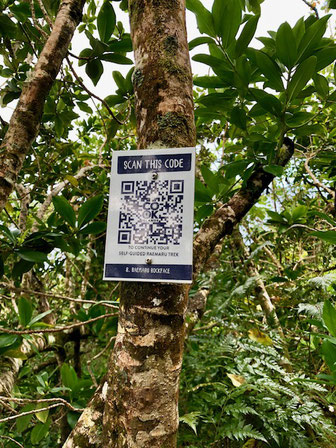 QR codes to scan on the way up
