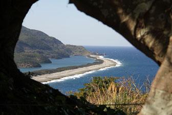 甑島 上甑島 長目の浜展望所 あこうの木